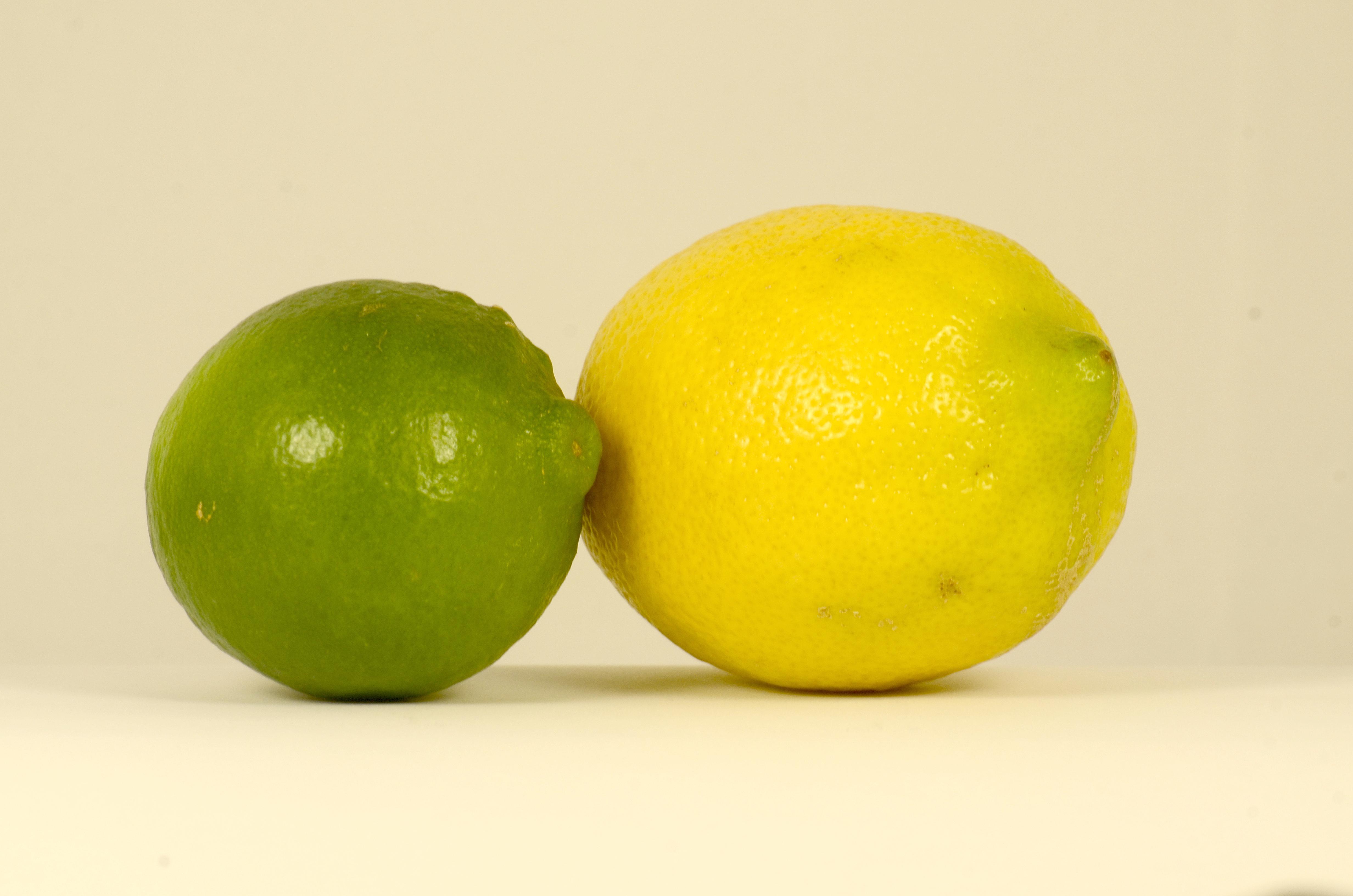 lime et citron sur fond blanc pour une consommation responsable. Black Bedroom Furniture Sets. Home Design Ideas